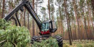Частный лес