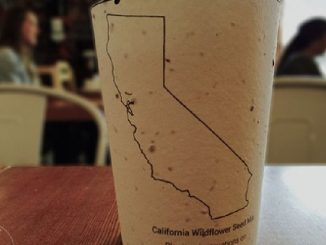 Биоразлагаемая посуда Plantable Coffee Cup