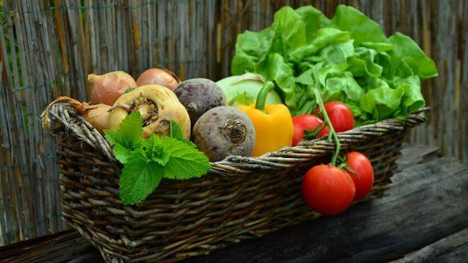 Выращивание овощей как бизнес